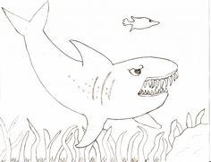 hammerhead shark coloring pages to print