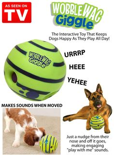 Wobble Wag Giggle Dog        Deal of the day    http://amzn.to/2bY6R7x