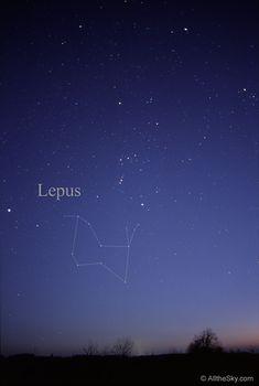 Visual Constellation Photos - Lepus, the hare