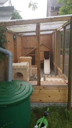 Rabbit Hutches, Catio, Farm Animals, Shelter, Pergola, Rabbit Ideas, Outdoor Structures, Park, Rabbits