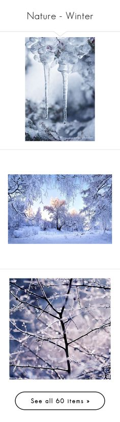 """""""Nature - Winter"""" by dezaval ❤ liked on Polyvore featuring christmas, backgrounds, winter, pictures, photos, nature, filler, photography, image and home"""