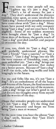 """Sometimes, my """" just a dog"""" is just what I need on tough days. This made me think of him.❤️"""