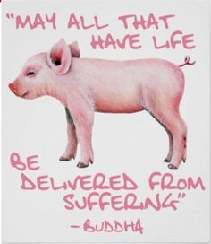 Life is already suffering. Go Vegan. Vegan for the animals, Vegan for love. Vegan Memes, Vegan Quotes, Vegetarian Memes, Vegan Art, Vegan Food, Vegan Recipes, Vegan Animals, Vegan For The Animals, Why Vegan