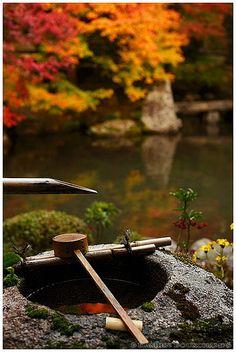 Water basin with ladle, Renge-ji Temple, Kyoto, Japan; photo by .Damien Douxchamps