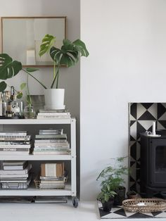 Propagating a monstera plant couldn't be easier – these resilient tropical plants with their broad, heart-shaped leaves just keep on giving Terracotta Plant Pots, Simple Interior, London House, Interior Plants, Botanical Interior, Küchen Design, Interior Design Inspiration, Apartment Therapy, Apartment Design