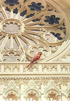 """The Cardinal"" Cathedral Church Watercolor, Paul Jackson"