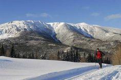 Parc national de la Gaspésie - Sainte-Anne-des-Monts | Centres de ski de fond - Gaspésie | Québec Original