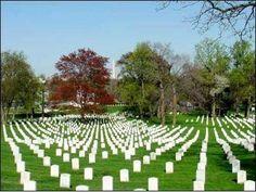 Arlington - Washington, DC