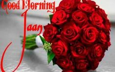 Good Morning Images New Good Morning Janu, Good Morning Images Download, Friends Image, Rose, Flowers, Floral, Roses, Royal Icing Flowers, Florals