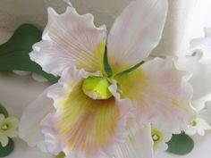 Orquídea para tarta