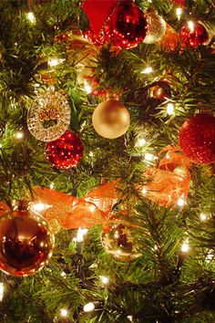 396 Best Merry Christmas Quotes Wishes Poems Pictures