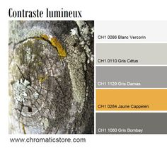 The mustard-yellow versions, very contemporary, like the Cappelen Yellow, will create a luminous contrast with neutral or colored grays (Cétus Gray, Damascus or Bombay).chromaticstor … Source by Chromatic_PPG Off Colour, Gray Color, Color Balance, Modern House Plans, Beige Walls, Black Decor, Mustard Yellow, House Colors, Pantone