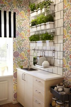 Ideas for a Stylish Indoor Kitchen Herb Garden Apartment Therapy Growing herbs indoors isnt just a dream its a reality you can get to work on today Using systems such a. Herb Garden In Kitchen, Diy Herb Garden, Kitchen Herbs, New Kitchen, Garden Ideas, Kitchen Ideas, Herbs Garden, Wall Herb Garden Indoor, Vegetable Garden