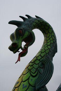Serpent close up  Serpent Lake Crosby, Minnesota