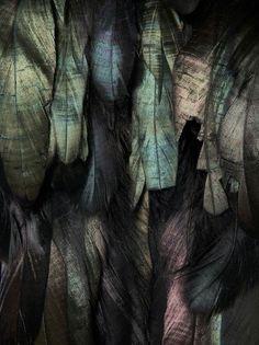 Velvety, moody, intriguing. Via La Boheme