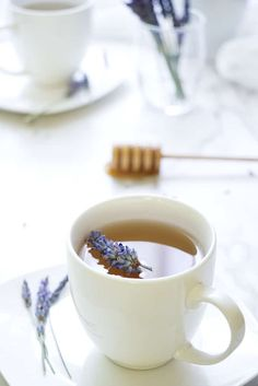 Homemade Lavender Tea - Savor the Best Lavender Recipes, Lavender Tea, Lavender Fields, Peppermint Tea, Best Tea, Tea Recipes, Herbalism, Herbal Tinctures, Herbal Teas