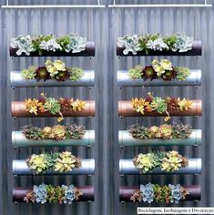 Vertical PVC Pipe planter    but would it work with salad greens? hmmm