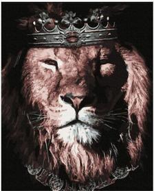 Lion King Art, Lion Of Judah, Lion Art, Lion Images, Lion Pictures, All Animals Photos, Lions Photos, Save Animals, Wild Animal Wallpaper