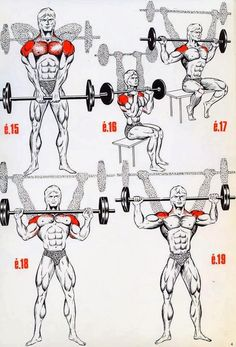 Fitness Training Tips: The Fitness era: BEAST shoulder workout!