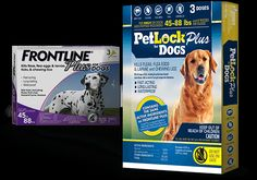 PetLock - Best Flea And Tick Treatment For Dogs