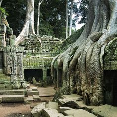 Three days will give you a taste of Siem Reap and its archaeological sites with time for a handful of other engaging experiences. Spend the first day focused on the star sights at Angkor …