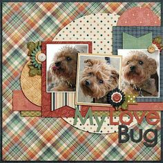 Single page ~ three photos; circles; scraps; layers pet; dogs