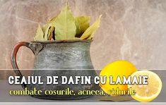 Festive, Skin Care, Plant, Health And Wellness, Skincare Routine, Skins Uk, Skincare, Asian Skincare, Skin Treatments