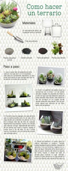 Terrariums - instrucciones en Español