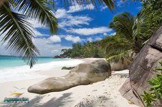 No. 3: Seychelles