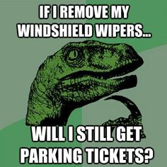 If I removed my windshield wipers...