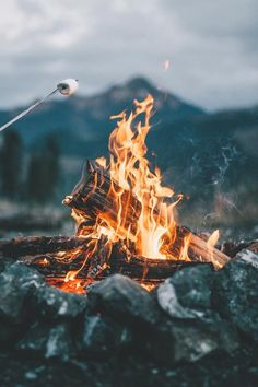 Clean photo of the bonfire - Camping
