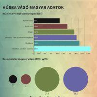 Infographic: Húsba vágó adatok