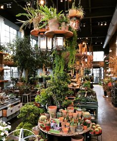 Not usually a fan of hanging plants unless there's some additional structure involved and that's totally what's going on here. A little hard and a little soft. Indoor Garden, Indoor Plants, Outdoor Gardens, Flower Shop Interiors, Garden Center Displays, Flower Shop Design, Plant Table, Outdoor Flowers, Greenhouse Gardening