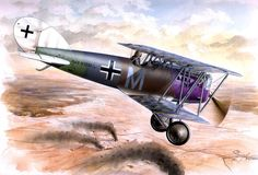 1918 Pfalz D.XII  Vizefeldwebel Ludwig Marchner, Jasta 32b
