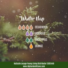 It's starting to snow, it's the end of a long day.... the perfect time for diffusing Winter Nap. Cozy, relaxing, calming, wonderful.