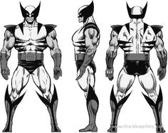 Wolverine V2 Front,back,right and left side