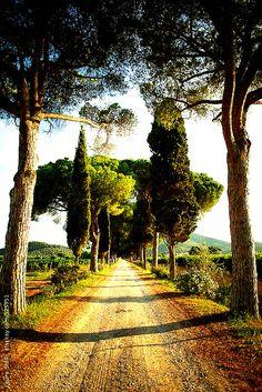 Toscane, www.luxetent.nl/italie