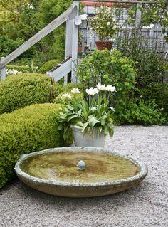 fågelbad, bath for birds in the garden Garden Design, Garden Structures, Container Garden Design, Water Features In The Garden, Landscape Design, Small Gardens, Outdoor Gardens, Dream Garden, English Garden Design