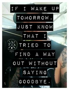 All F****d Up // The Amity Affliction