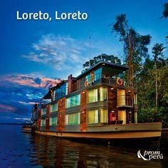 La Selva - the jungle -Peru