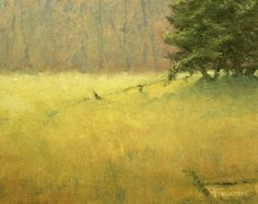 plein air oil painting of fields that have been left unharvested in fall. This website is a showcase of recent paintings that are for sale online.