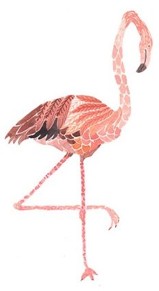 Flamingo - artist, Michelle Morin