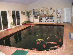 Indoor outdoor koi pond for the home pinterest koi for Koi pond maintenance near me