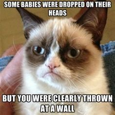 some babies were dropped on their heads but you were clearly thrown at a wall