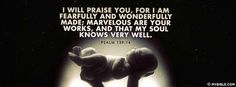 Psalms 139:14 NKJV - Fearfully And Wonderfully Made. - Facebook Cover Photo