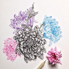 Designs For Garden Flower Beds Noel Badges Pugh : Photo Botanical Line Drawing, Botanical Art, Banksy Graffiti, Toddler Art Projects, Sister Tattoos, Ink Pen Drawings, Watercolor Cards, Watercolour, Flower Art