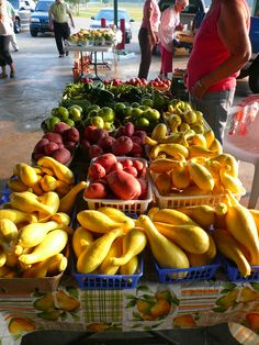 2011 Opening of Dallas Cty Farmers Market! Miss the fresh fruit and veggies! Can't wait for spring planting :o)