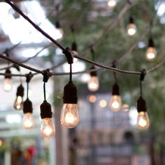 Terrain Vintage Drop Lights - could be criss-crossed across opposite walls in cafe similar to Paris sidewalk cafe.