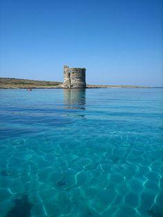 Stintino (Sardinia) #Italy