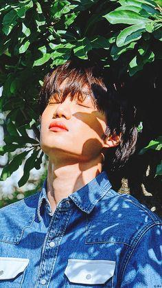 Post with 0 votes and 4933 views. Kaisoo, Krystal Jung, K Pop, Chen, Kim Kai, Exo Lockscreen, Kim Minseok, Baekhyun Chanyeol, Kpop Exo